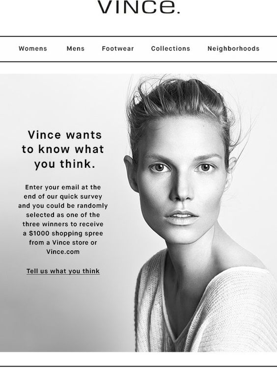 Vince survey invitation email examples