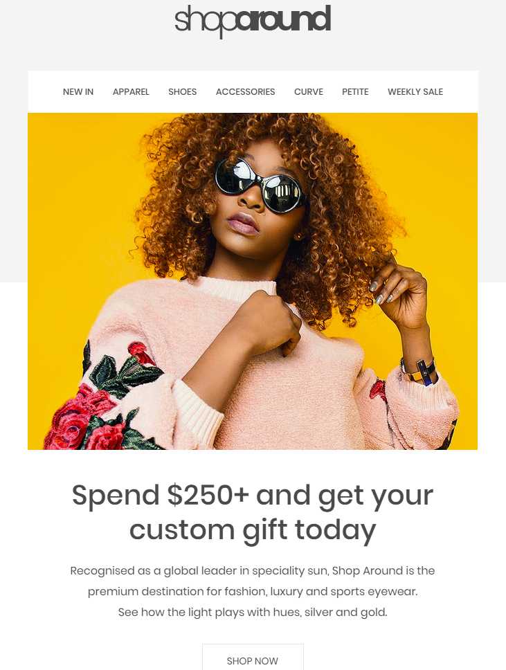 shoparound-free-ecommerce-email-template