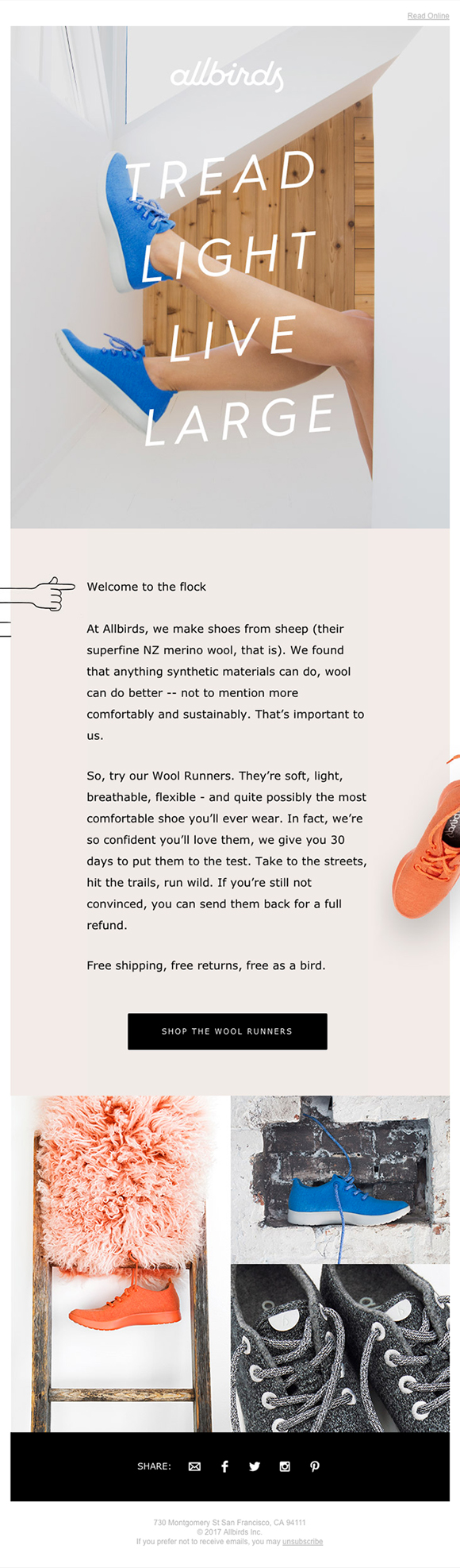 Email example by allbirds - Millennials