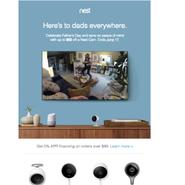Nest - Father's Day Email Campaign Examples