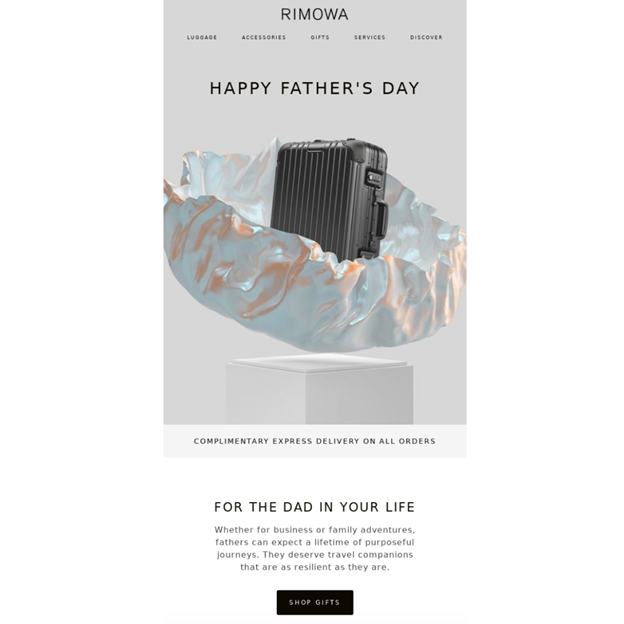 Rimowa - Father's Day Email Campaign Examples